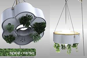 Indoor-Garteln: Ein Kräuter-Garten in der Wohnung