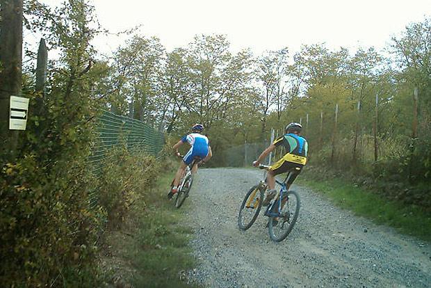 42 Kilometer Herausforderung für Sportliche - in Wien! Die Mountainbike-Strecke Kahlenbergdorf ist zurecht berühmt.