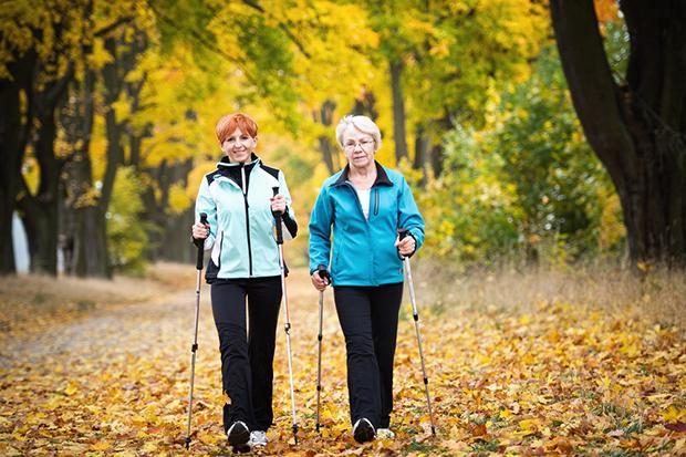 Oder wie wäre es damit einmal Nordic Walking auszuprobieren?