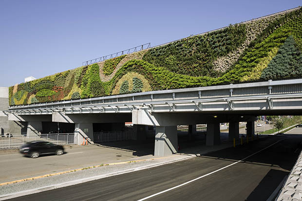 09 Guildford Town Centre - Exterior living walls, largest in North America (3)