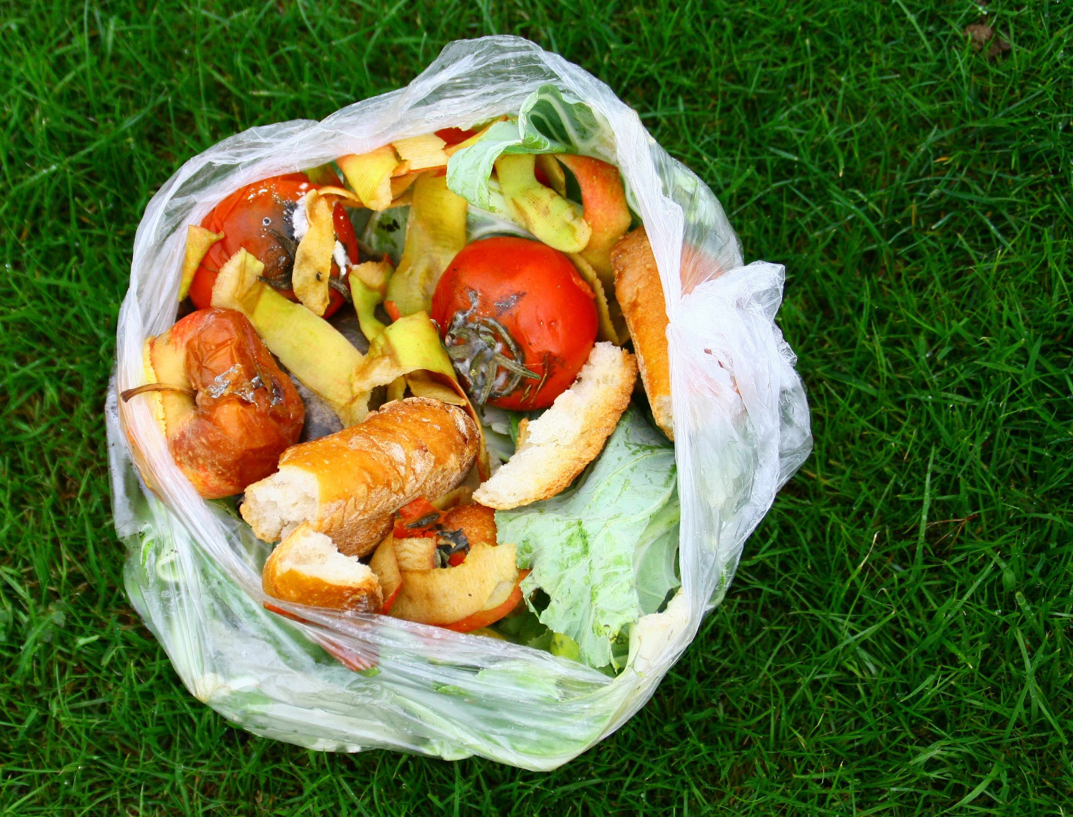 sac de dchets alimentaires pour compost © Patryssia / Adobe Stock