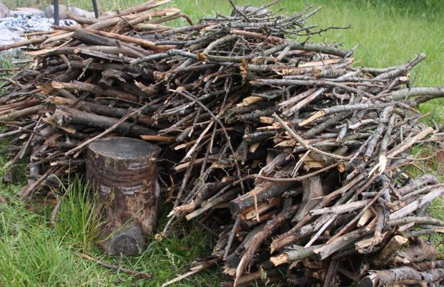 Nützlinge Holz Garten