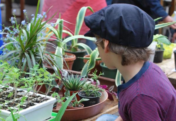 Pflanzentauschbörse2