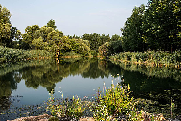 8. Donauauen
