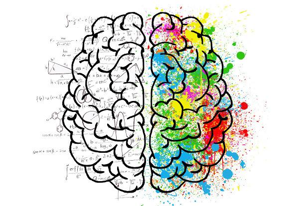 Je nachdem welche Gehirnhälfte aktiv ist, kann sich das durch Chaos oder Ordnung ausdrücken - Photocredit: pixabay.com/Elisariva