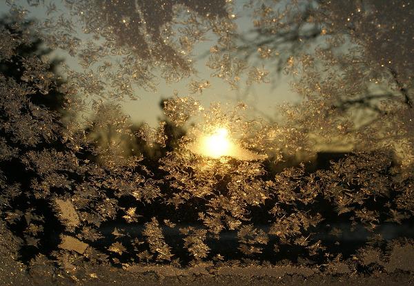 Zu Eiskristallen am Fenster aufzuwachen kann auch eine besondere Magie haben. - Photocredit: pixabay.com/wdillingh