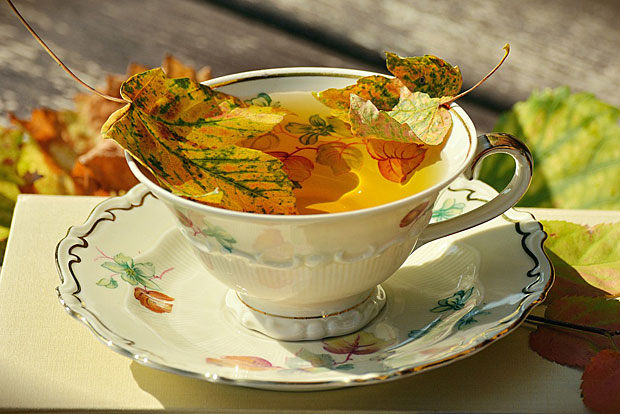 2. Jeden Tee mit kochendem Wasser aufgießen