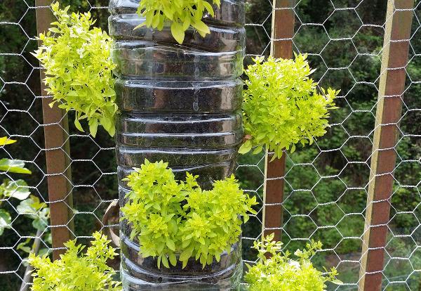 DIY vertikaler Garten - Photocredit: pixabay.com/Luisgopa