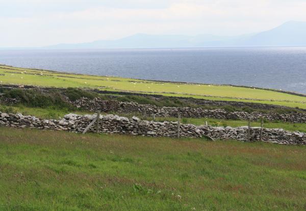 Steinmauern Irland