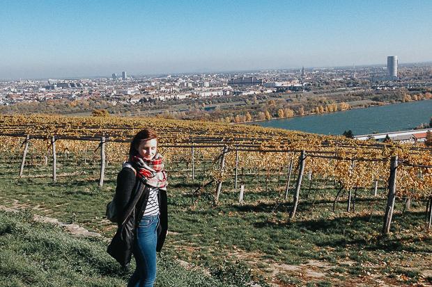 Blick über Wien; Fotocredit: Mira Nograsek