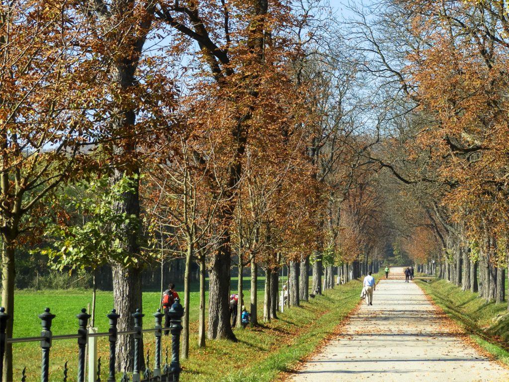 Spaziergang Wien