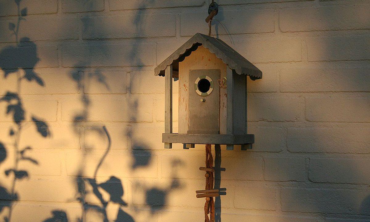 7. Auch wenn du noch so wenig Platz hast: Schaffe Platz für die Natur!