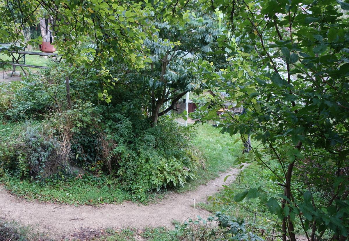 Waldgärten