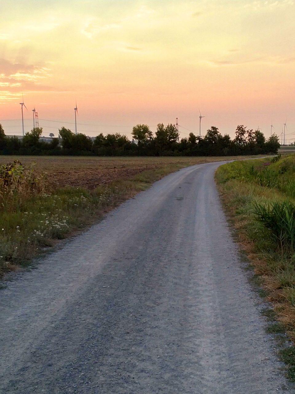 Feldweg bei Sonnenaufgang