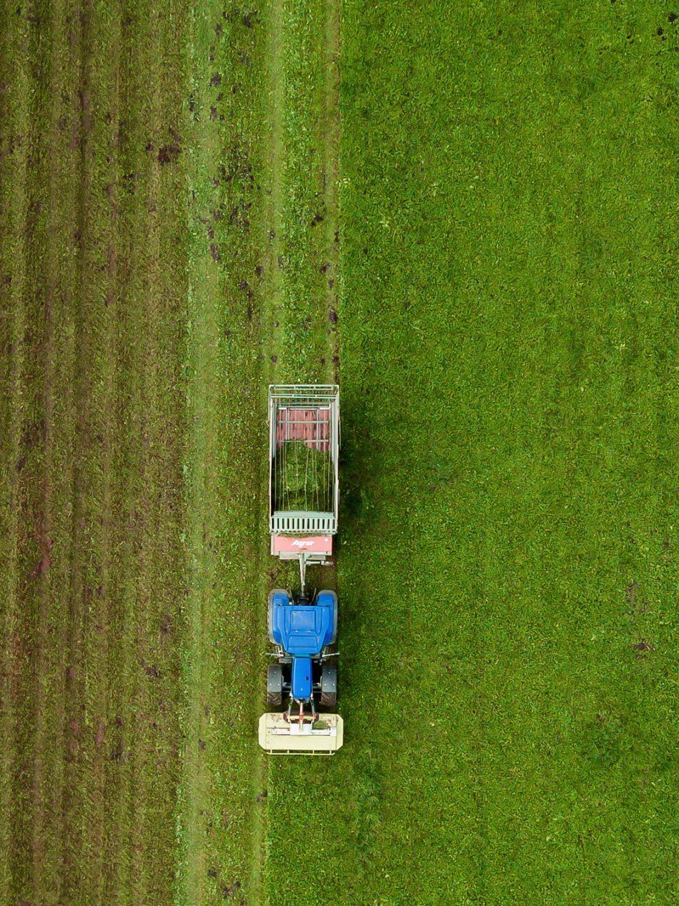 Bio Boom Greenwashing