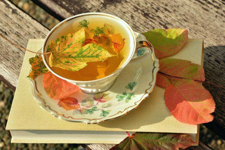 Mit diesen Tipps genießt du deinen Garten im Herbst – Fotocredit: pixabay.com