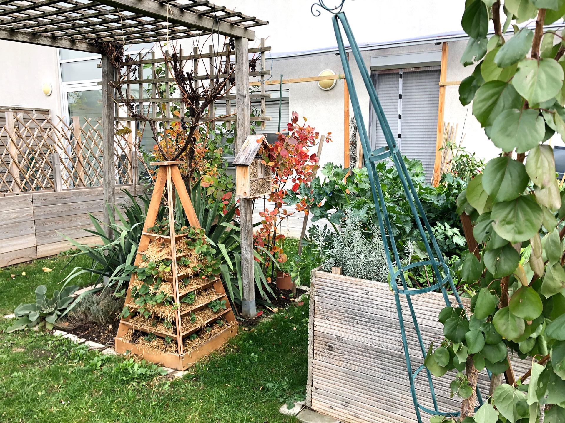 Einen Naturgarten Anlegen Erste Schritte Energieleben
