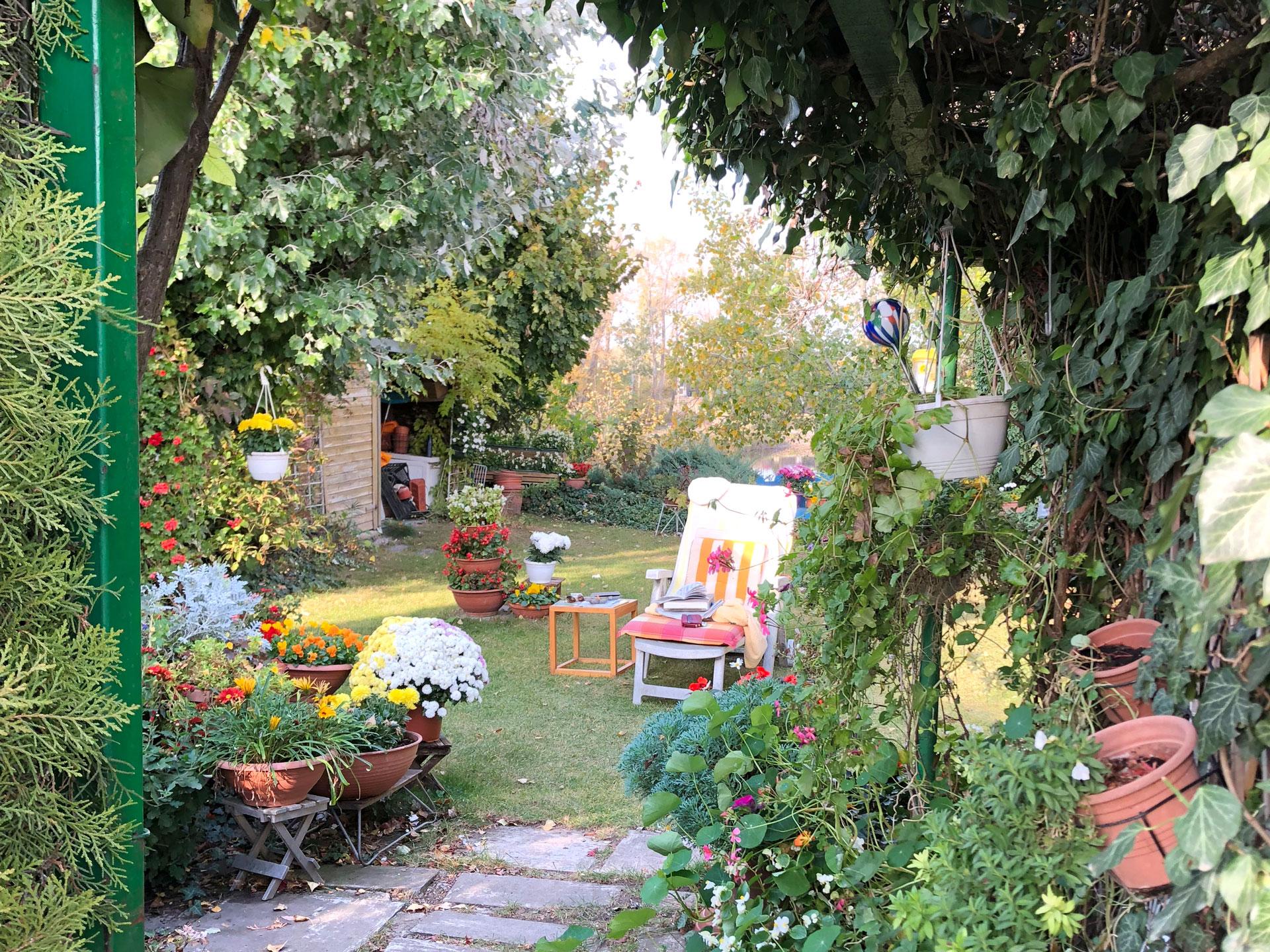 Superieur Ein Naturgarten Darf Ohne Viele Eingriffe Aus Menschenhand Wachsen!