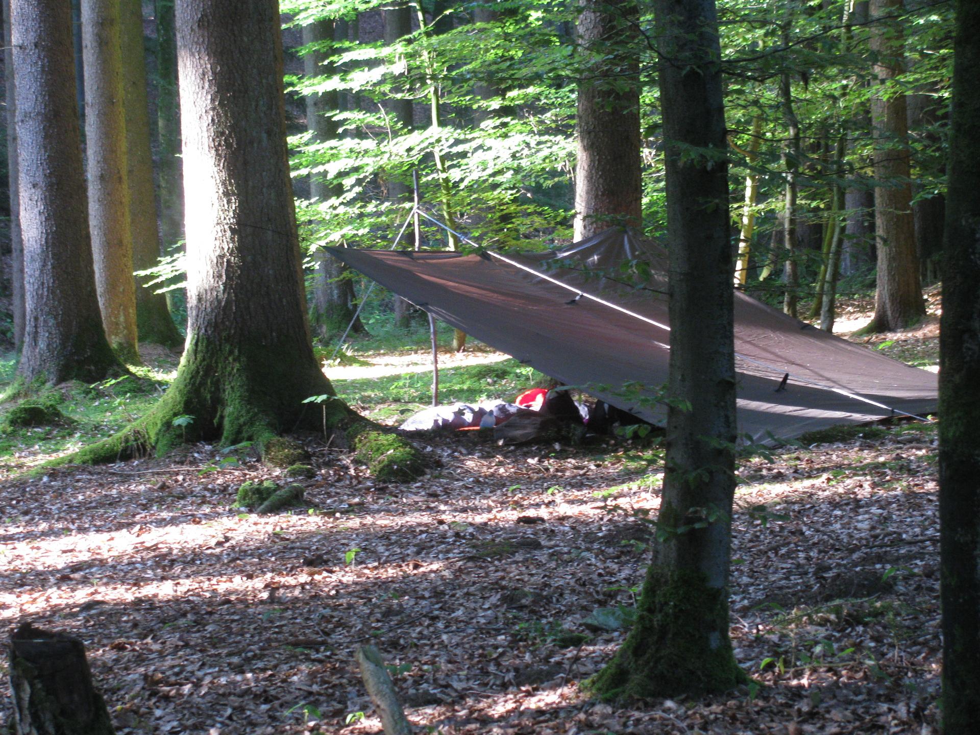 Schlafplatz im Wald mit Tarp