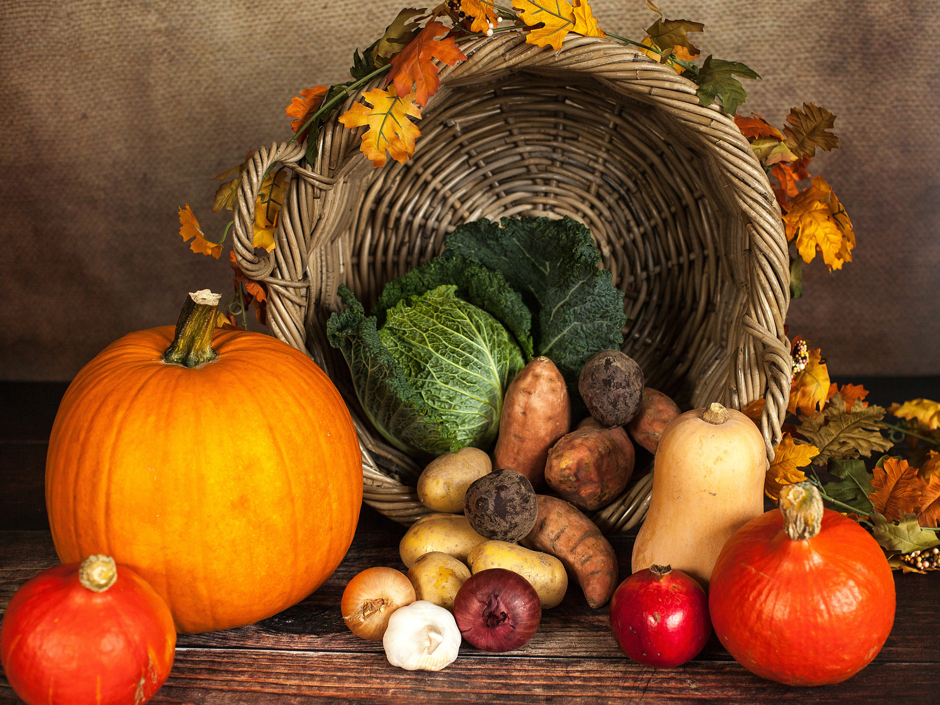 Die Fülle und Vielfalt der Ernte wird im Herbst so richtig schön sichtbar. - Photocredit: pixabay.com/Sabrina_Ripke_Fotografie