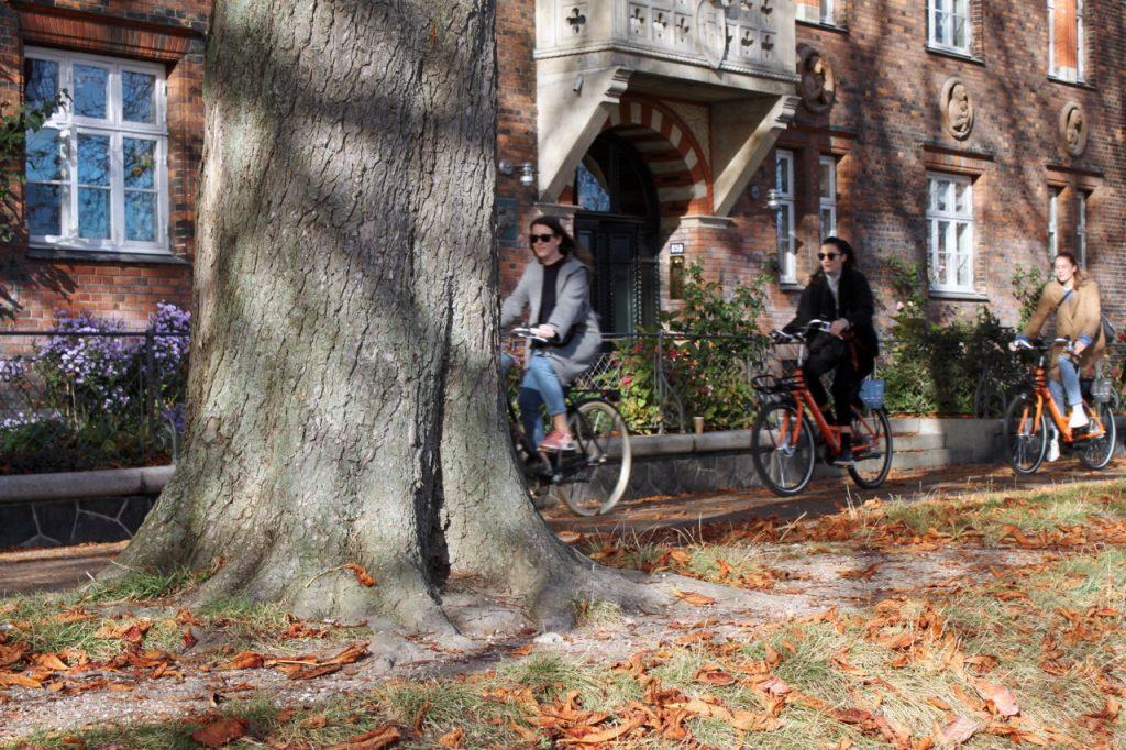 Freude beim Radfahren in Kopenhagen / Fotocredit: Pia Minixhofer