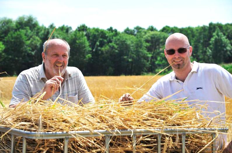 Trinkhalme aus Stroh – Entwickler Daniel Auer (rechts) mit seinem Vater mit dem Ausgangsmaterial