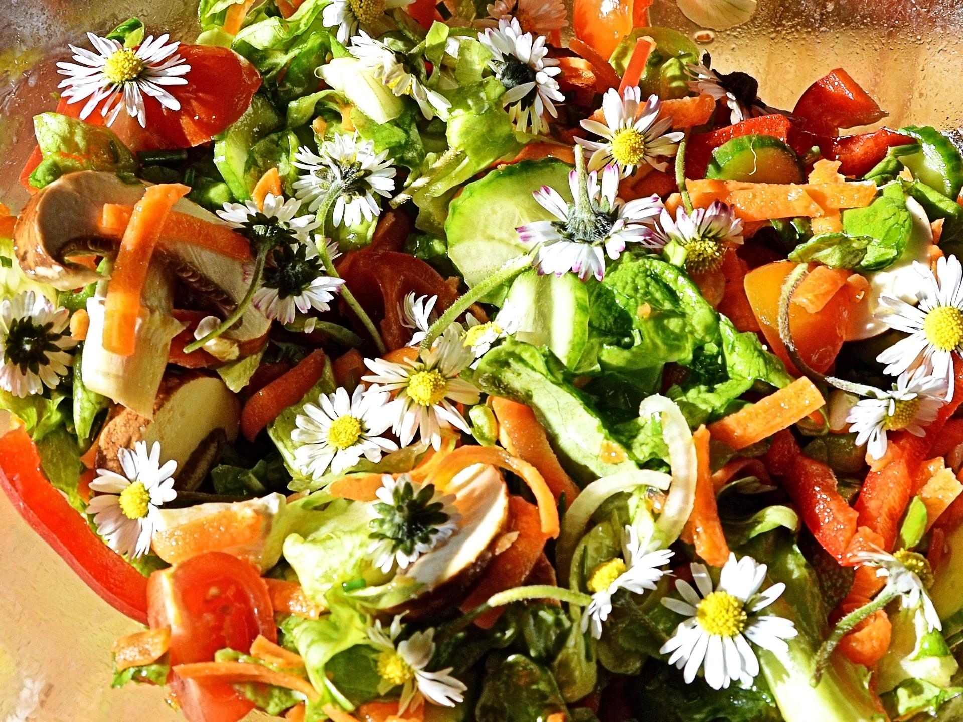 Je bunter der Salat, desto mehr Spaß hat man beim Essen. - Photocredit: pixabay.com/Lebemaja