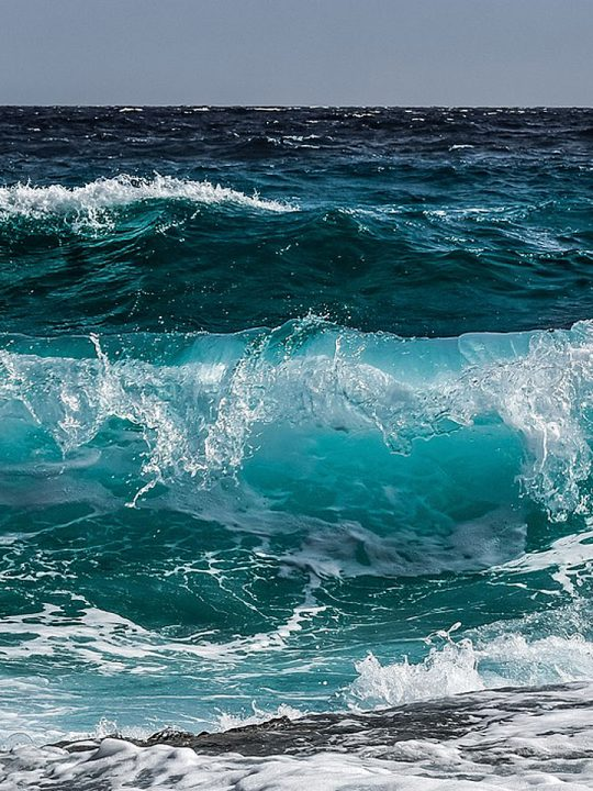 Fotocredit: Pixabay/dimitrisvetsikas1969