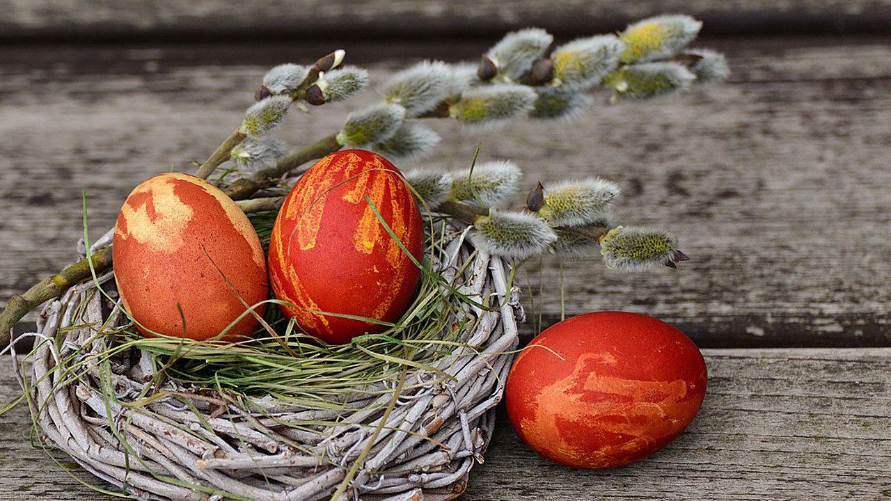 4. Färbe die Eier mit natürlichen Farbstoffen - Fotocredit: Pixabay/congerdesign