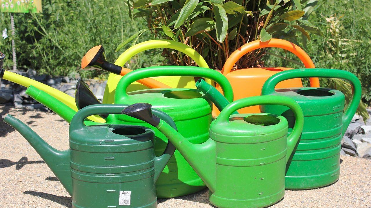 """4. Gießschnur. Vebinde das Wasserreservoir und den Blumentopf mit einem Wollfaden. Die Pflanze """"saugt"""" das Wasser über den Faden an. - Fotocredit: Pixabay/javallma"""