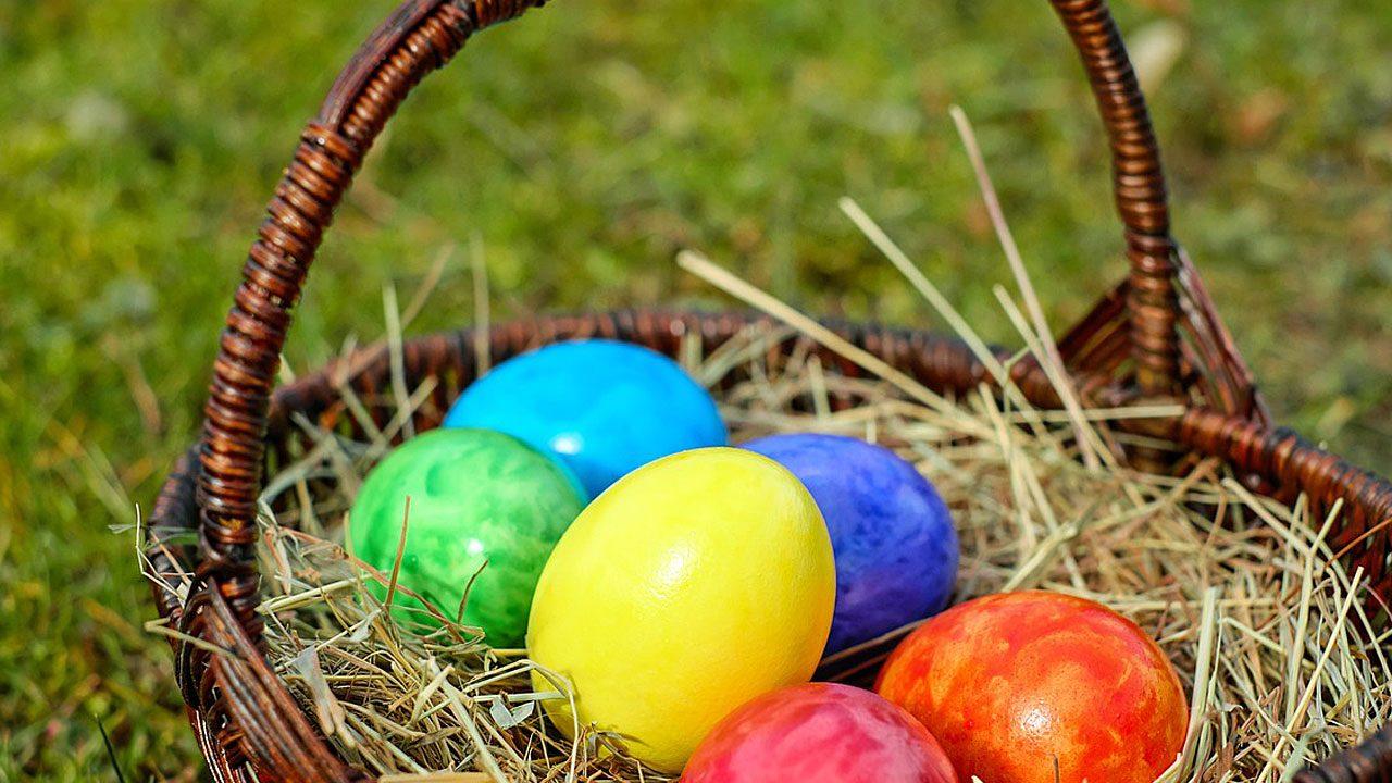 1. Ostergras wiederverwenden, ganz darauf verzichten oder Heu verwenden. - Fotocredit: Pixabay/Couleur