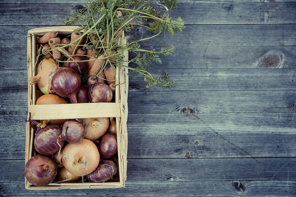 Gemüse aus dem eigenen Garten im urbanen Bereich? Das gibt's auch in Wien – Foto: © Markus Spiske / pixabay.com