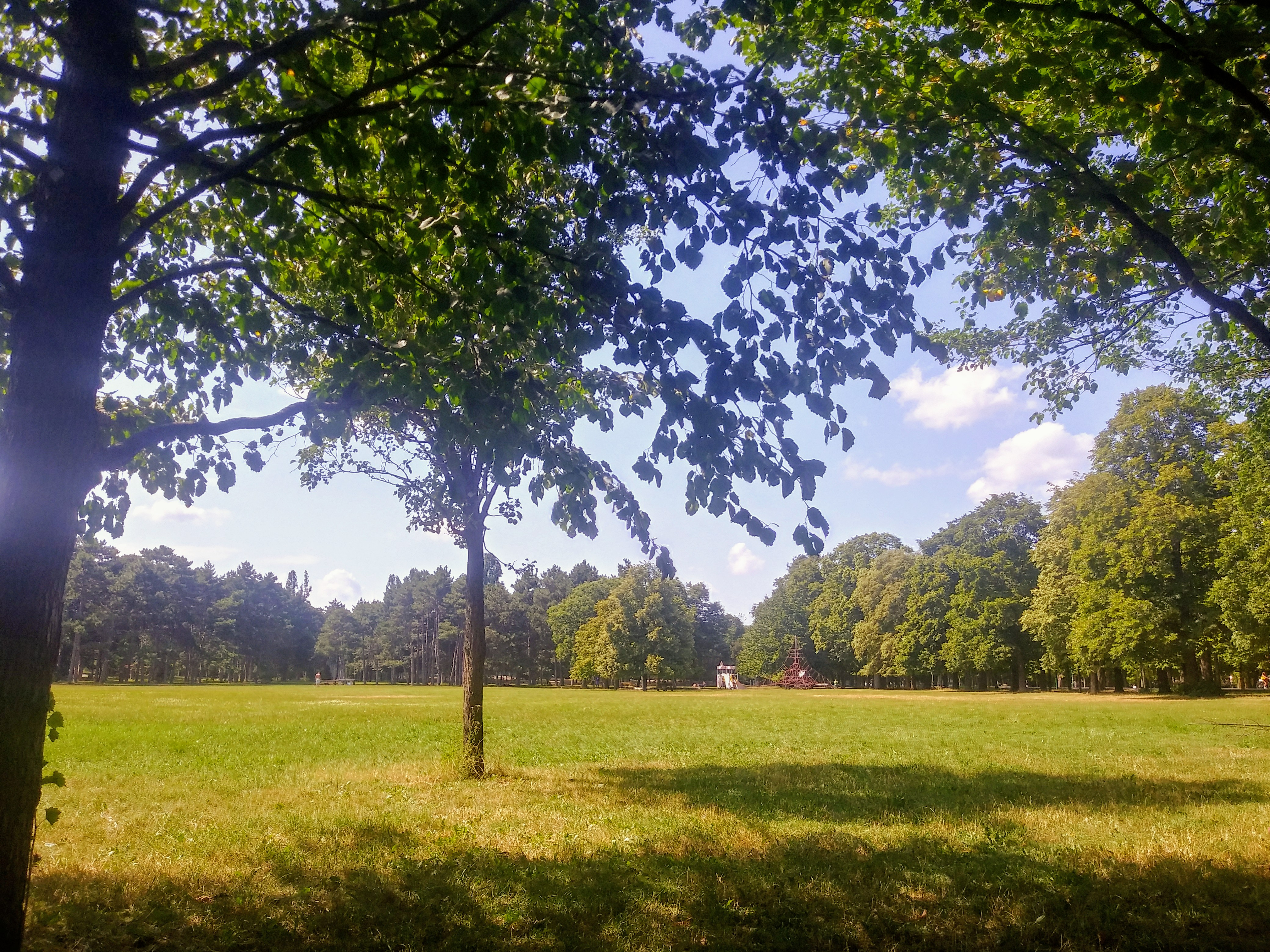 Grün so weit das Auge reicht. Ungestörtes Naturerlebnis gibt es hier an allen Ecken und Enden.