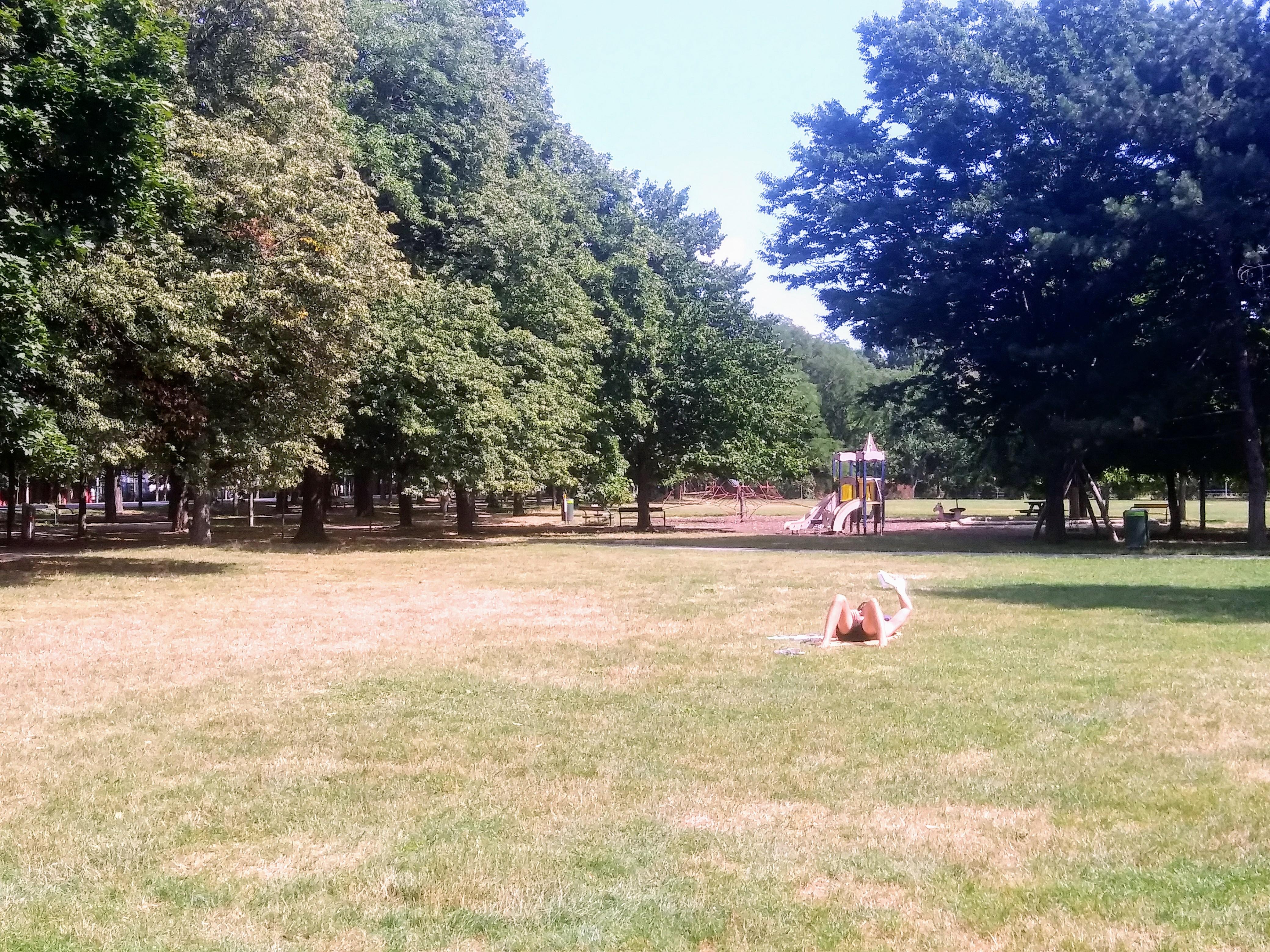 b Picknick, Frisbeespielen oder einfach nur mit einem guten Buch in der Sonne liegen – hier findet sich jeder sein Plätzchen.