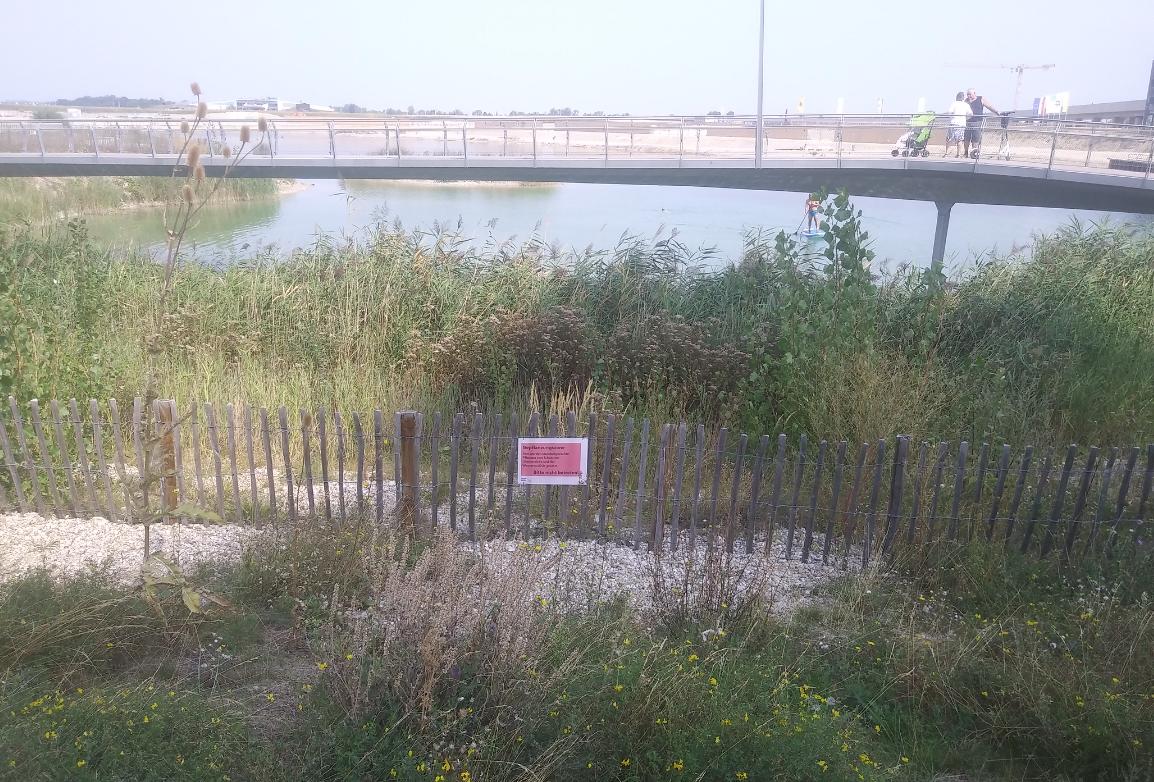 Bepflanzungszonen rund um den See sind Teil des nachhaltigen Konzepts