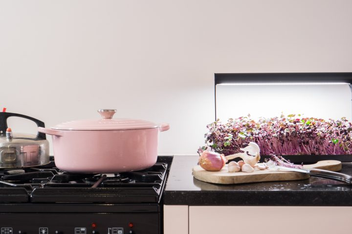 Dank MikroFarm frisches Superfood beim Kochen immer zur Hand / Foto: © MicroFarm – mother.life