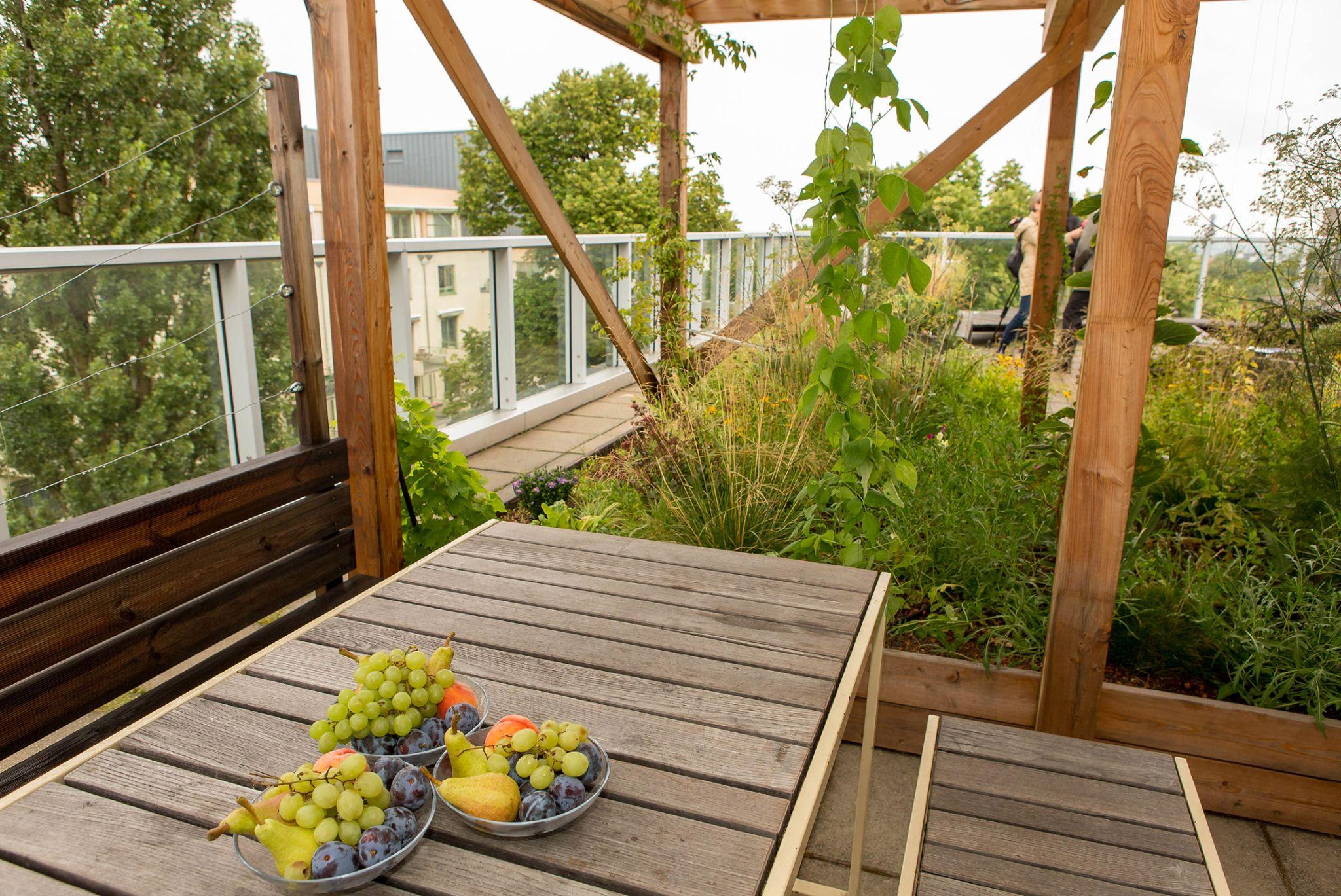 Neuer Photovoltaik-Dachgarten nutzt Gebäudedächer dreifach: Freiraum + Grünraum + PV-Strom Copyright: Houdek / PID