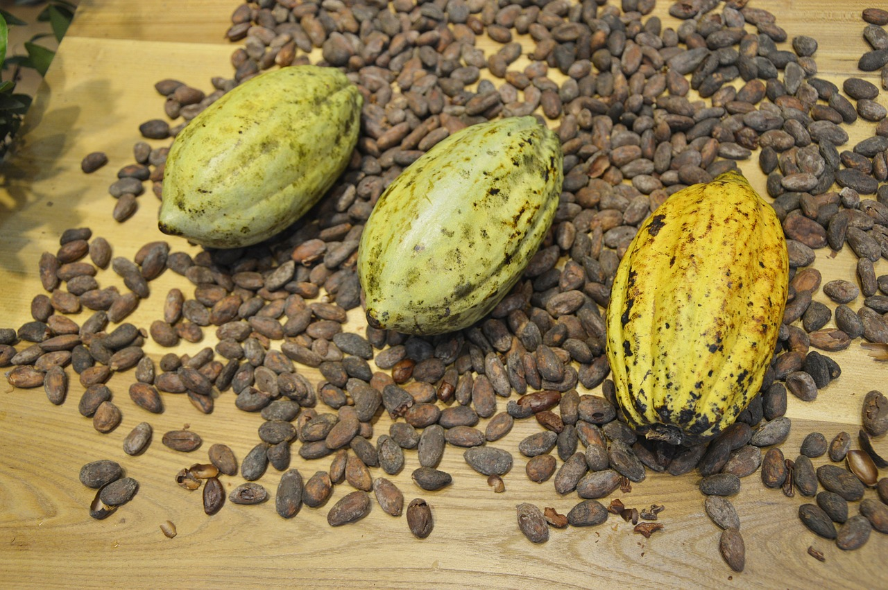 """Jede geerntete Tonne Kakaobohnen erzeugt zehn Tonnen Kakaoschalen"" – Foto: © Jing/ pixabay.com"