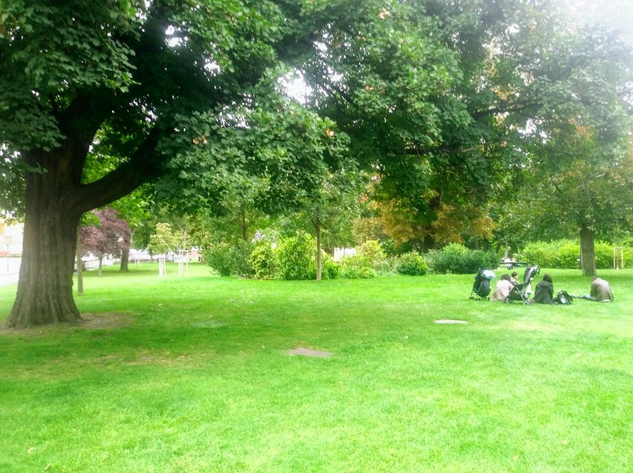 In der Parkanlage an der Wiener Ringstraße finden sich genügend Bänke und Grünflächen, auf denen sich die Innenstadt genießen lässt.