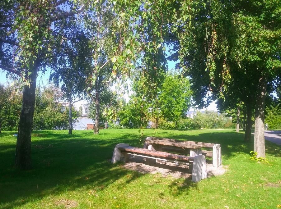 Keine Picknickdecke mit? Kein Problem: Auf der Donauinsel gibt es genügend Bänkchen mit Tischen, die zum Verweilen einladen.