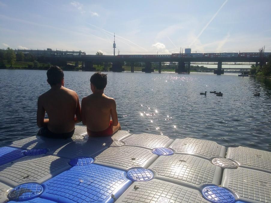 Baden mit Ausblick – für alle Altersklassen bietet die Donauinsel Schwimmvergnügen. Das gilt offensichtlich auch für die Enten.