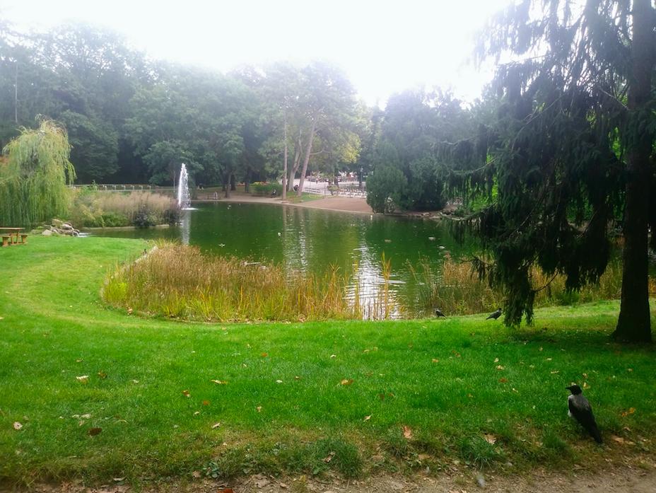 Rabensuchbild: Rund um die große Teichanlage finden sich zahlreiche gemütliche Bänke und Freiflächen zum Seelebaumeln lassen – für Mensch UND Tier.