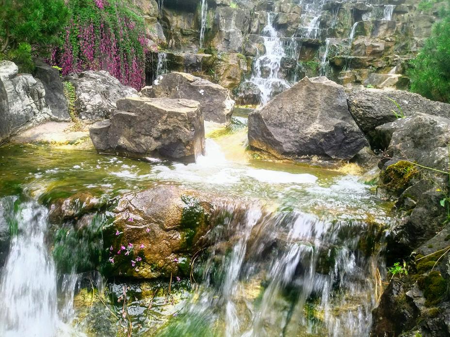 Der Wasserfall im Türkenschanzpark ist für Besucher eine besondere Attraktion und lädt wirklich zum Träumen ein.