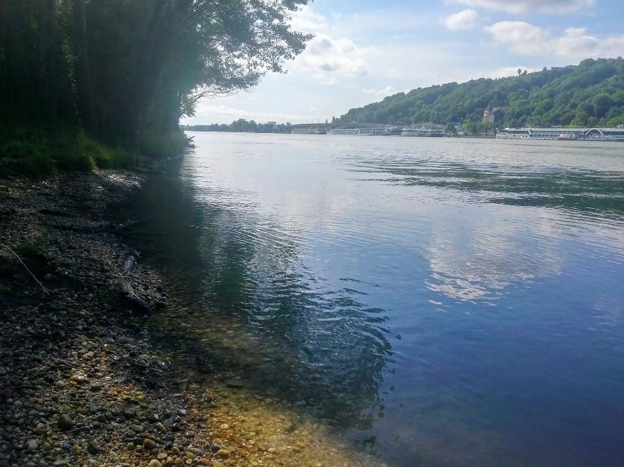 In so manch lauschiger Bucht lässt es sich im Sommer herrlich auf der Donauinsel baden.