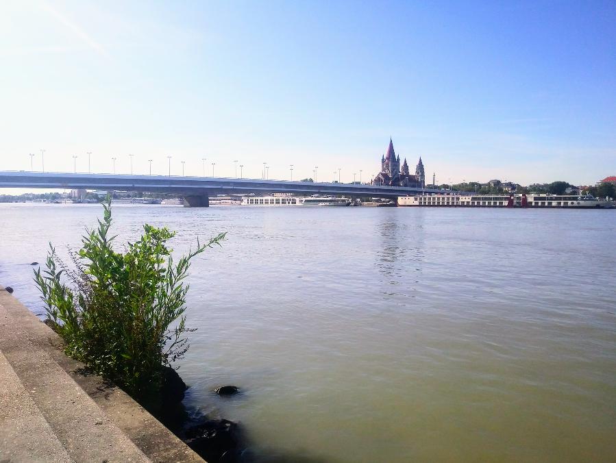 Ein Märchenschloss? Ein Palast? Nein – nur der Blick von der Donauinsel auf die Pfarrkirche zum heiligen Franz von Assisi im rheinisch-romanischen Stil am Mexikoplatz.