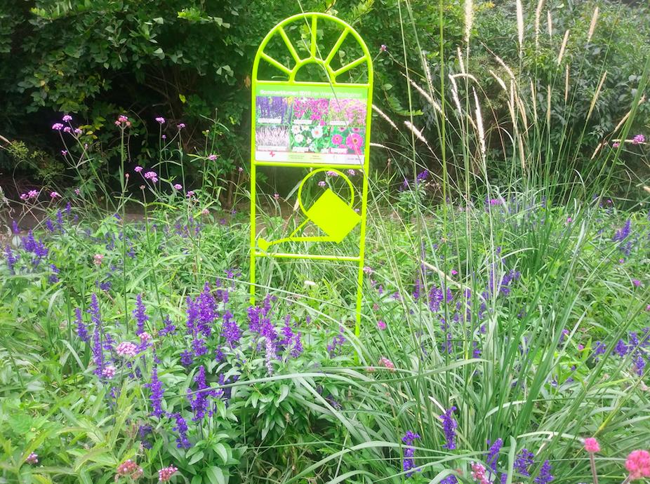 Bunt ist es im Stadtpark auf alle Fälle. Bei der Bepflanzung des Parks wurde übrigens auf eine möglichst ganzjährige Blüte geachtet.