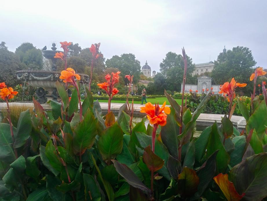 Pflanzen spielen im Volksgarten also eine große Rolle. Hier sieht man den Biotopbewuchs beim Volksgartenbrunnen.