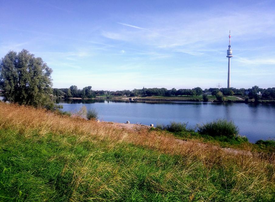 So viel Grün und so viel Wasser. Der Blick auf den Donauturm versichert dem Besucher aber: Wir sind wirklich noch in Wien!