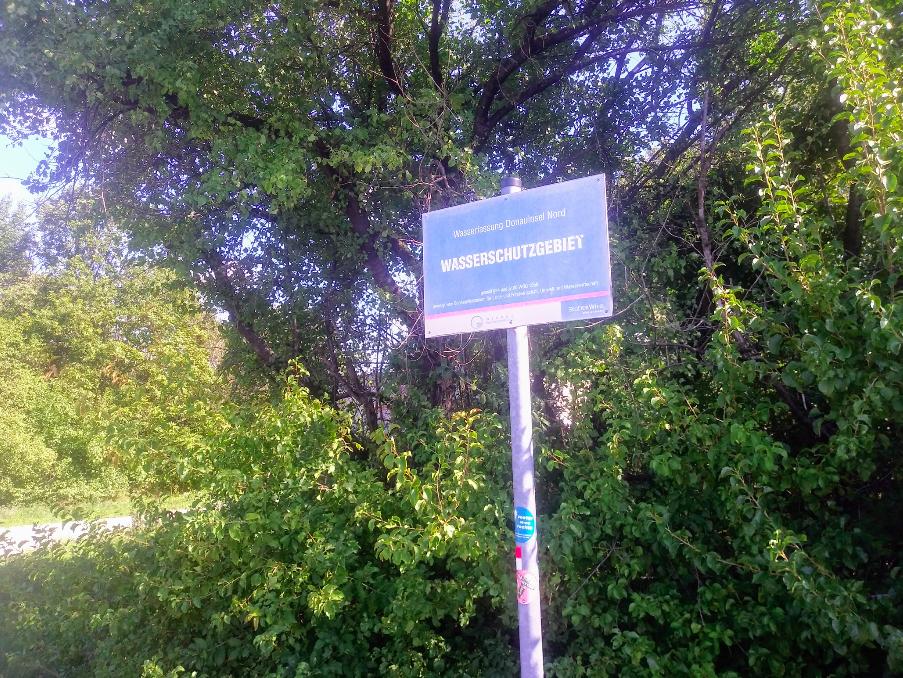 Das Wasserschutzgebiet rund um die Donauinsel ermöglicht einer Vielzahl von Tieren und Pflanzen natürlichen Rückzug und qualitativen Lebensraum.