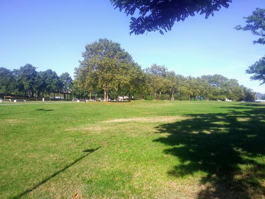 Grünflächen so weit das Auge reicht – hier auf der Insel findet sich jeder ein ruhiges Plätzchen, auf dem sich die Picknickdecke aufschlagen lässt.